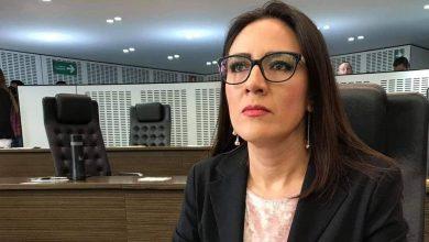 Photo of Dip. Paloma Arce informa sentido de voto por exhorto de Peña Colorada